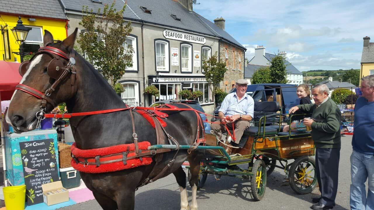 Rosscarbery horse fair